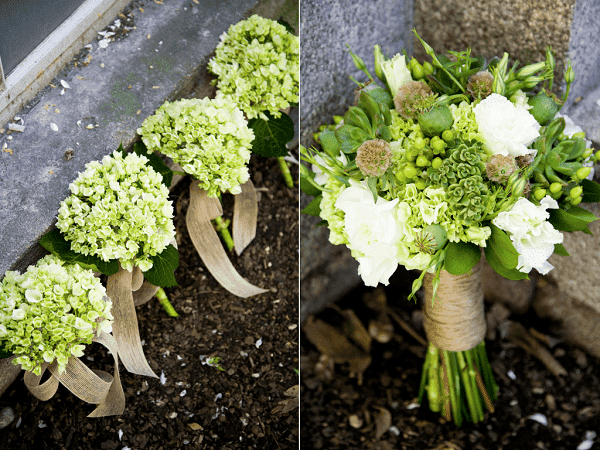 hoa cưới cẩm tú cầu 2