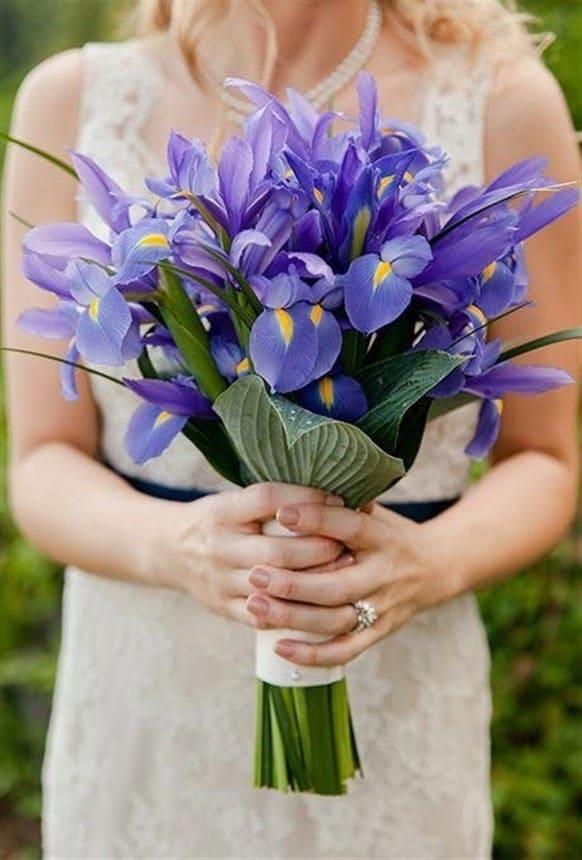 Ý nghĩa của hoa cưới hoa diên vĩ