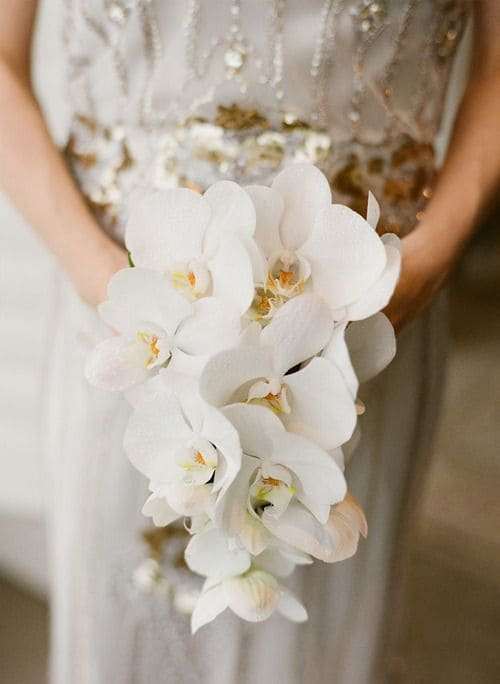 Ý nghĩa của hoa cưới hoa lan